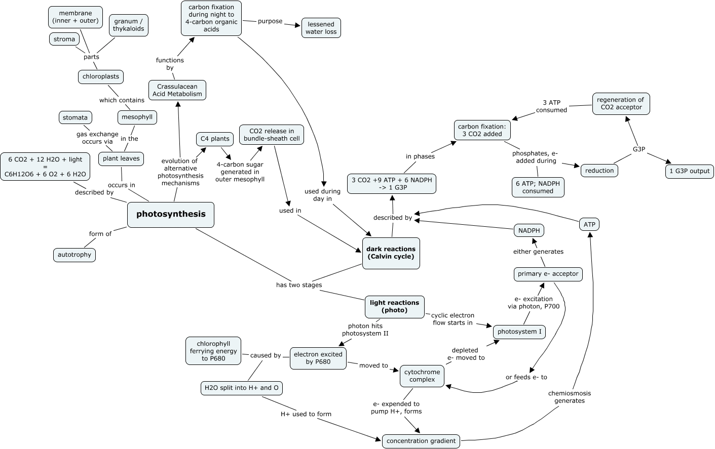 photosynthesis concept map - photosynthesis