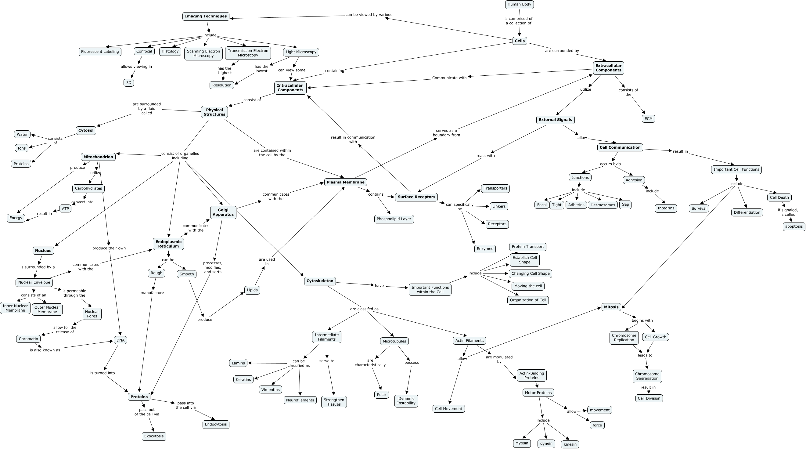 1 ECM Concept Map   What is the major structure and function of