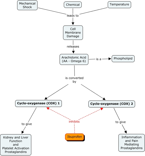 Liver Pain Diagram