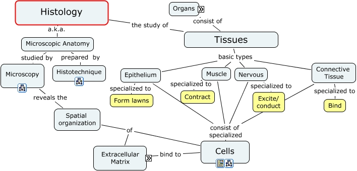 Histology - What is histology? Unicellular Organisms Diagram