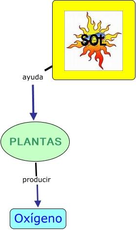 Las plantas a qu ayuda el sol a las plantas - Plantas que aguanten el sol ...