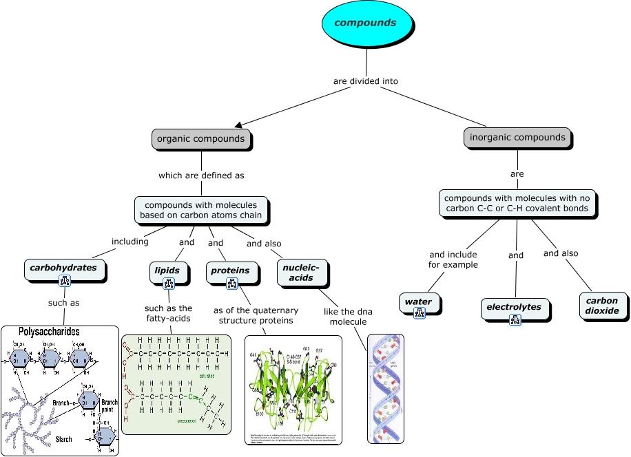 Organic Molecule Concept Map.Organic Compounds