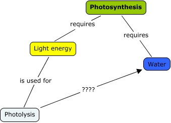 light reqirements for photosythesis