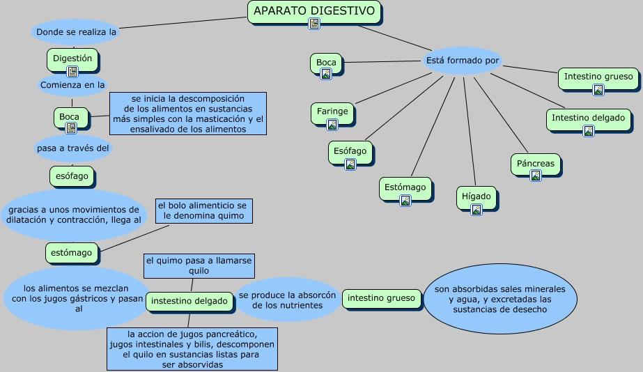 APARATO DIGESTIVO.cmap?rid=1276766437531_1735784623_14792&partName=htmljpeg