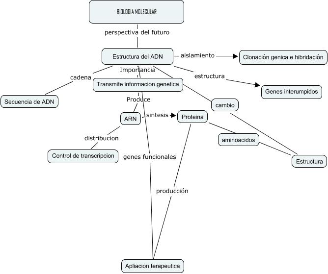 Biologia Molecualr Importancia De La Biologia Molecular