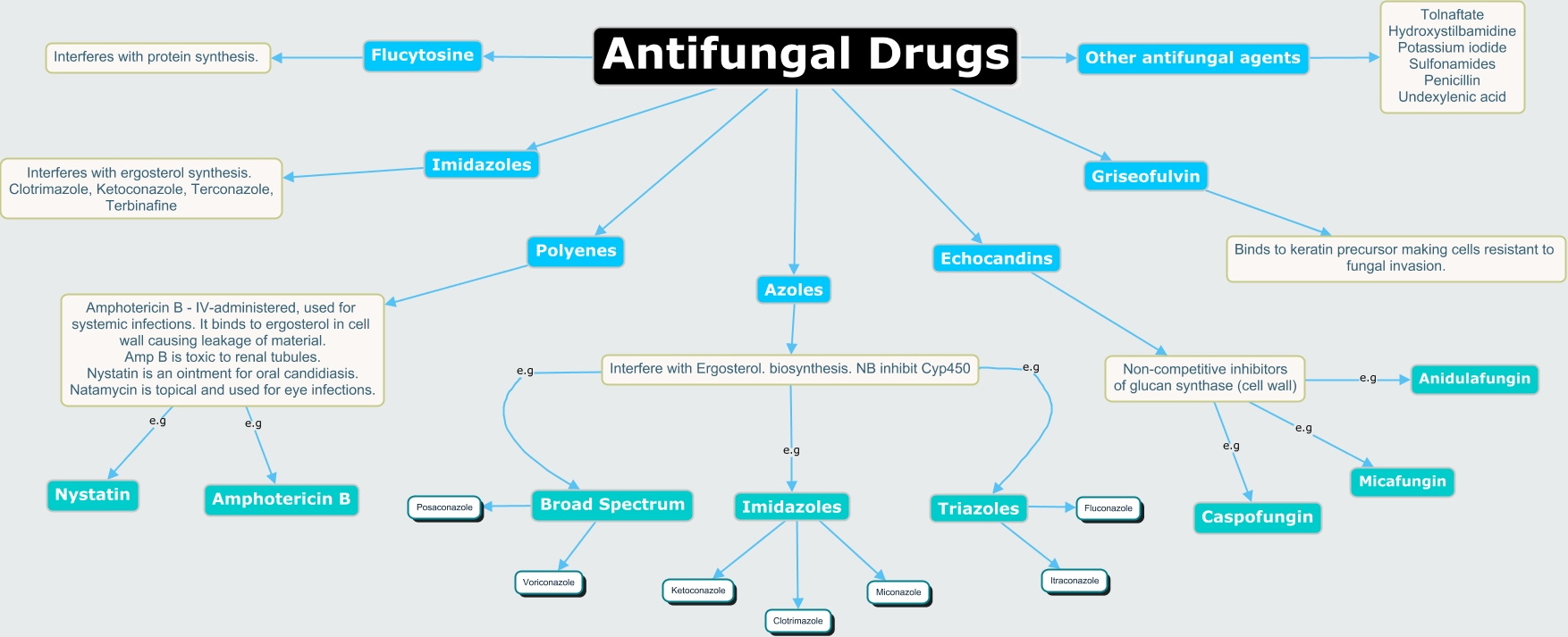 Antifungal medication - ScienceDirect Topics
