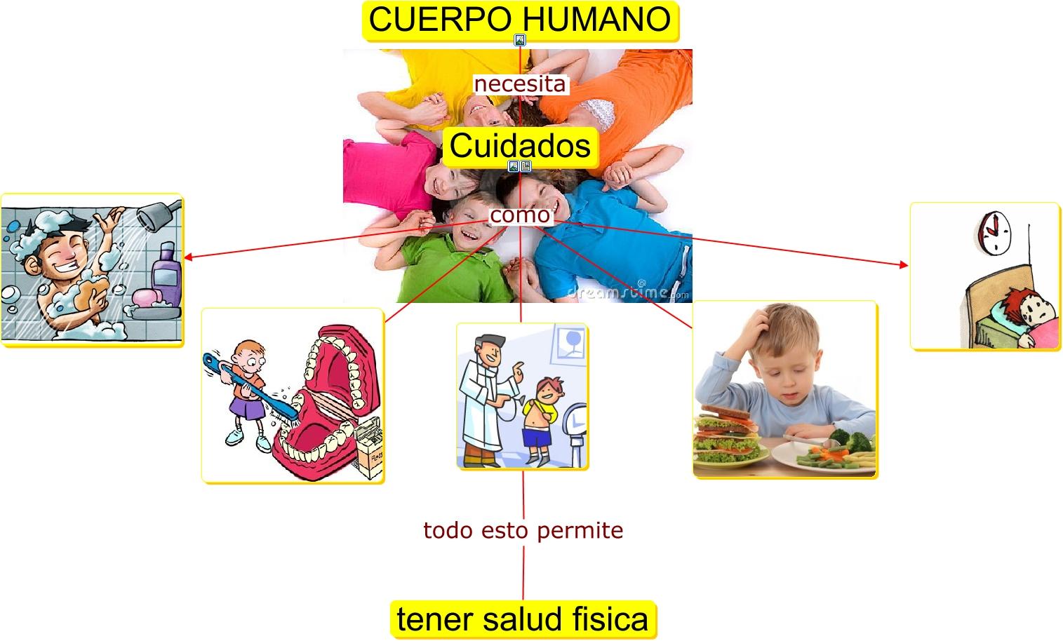Gata El Cuidado Del Cuerpo: Juglares De Torremar: Unidad 1 El Cuerpo Humano Y La Salud
