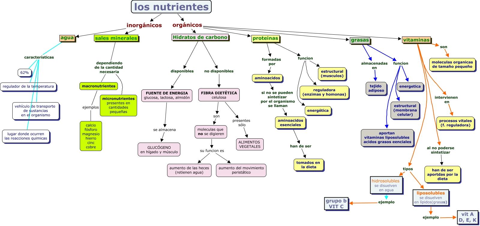 tipos nutrientes