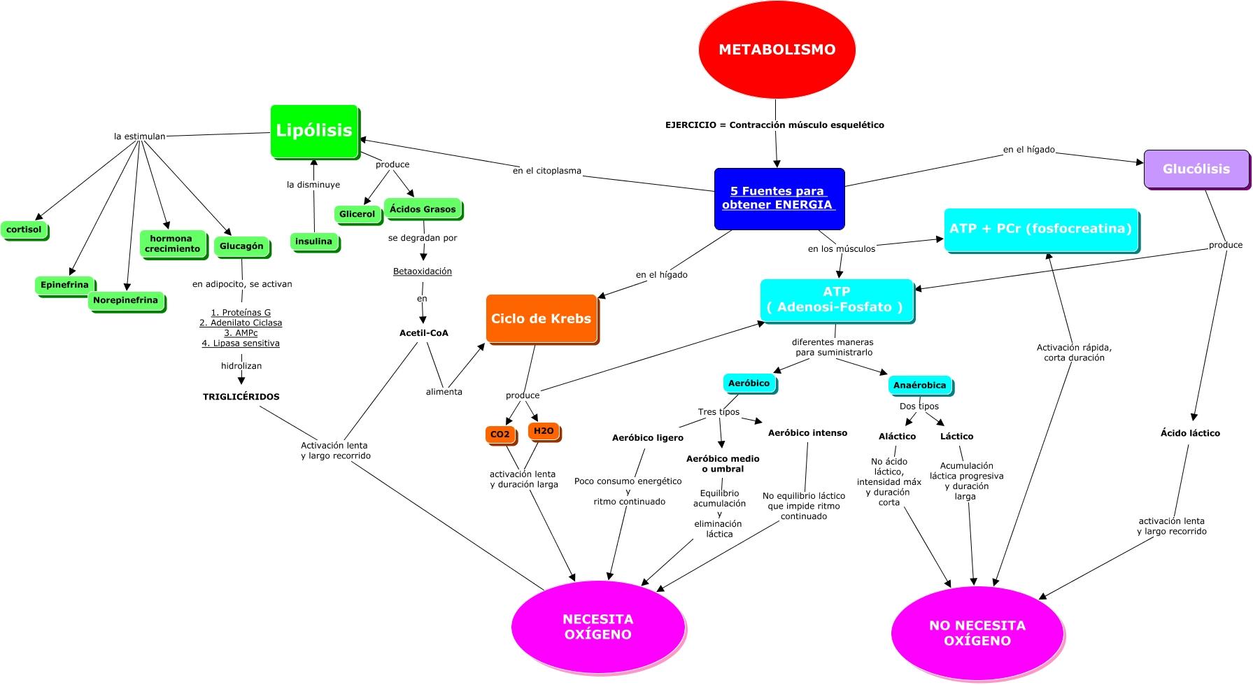 Dietoterapia nutrición clínica y metabolismo pdf
