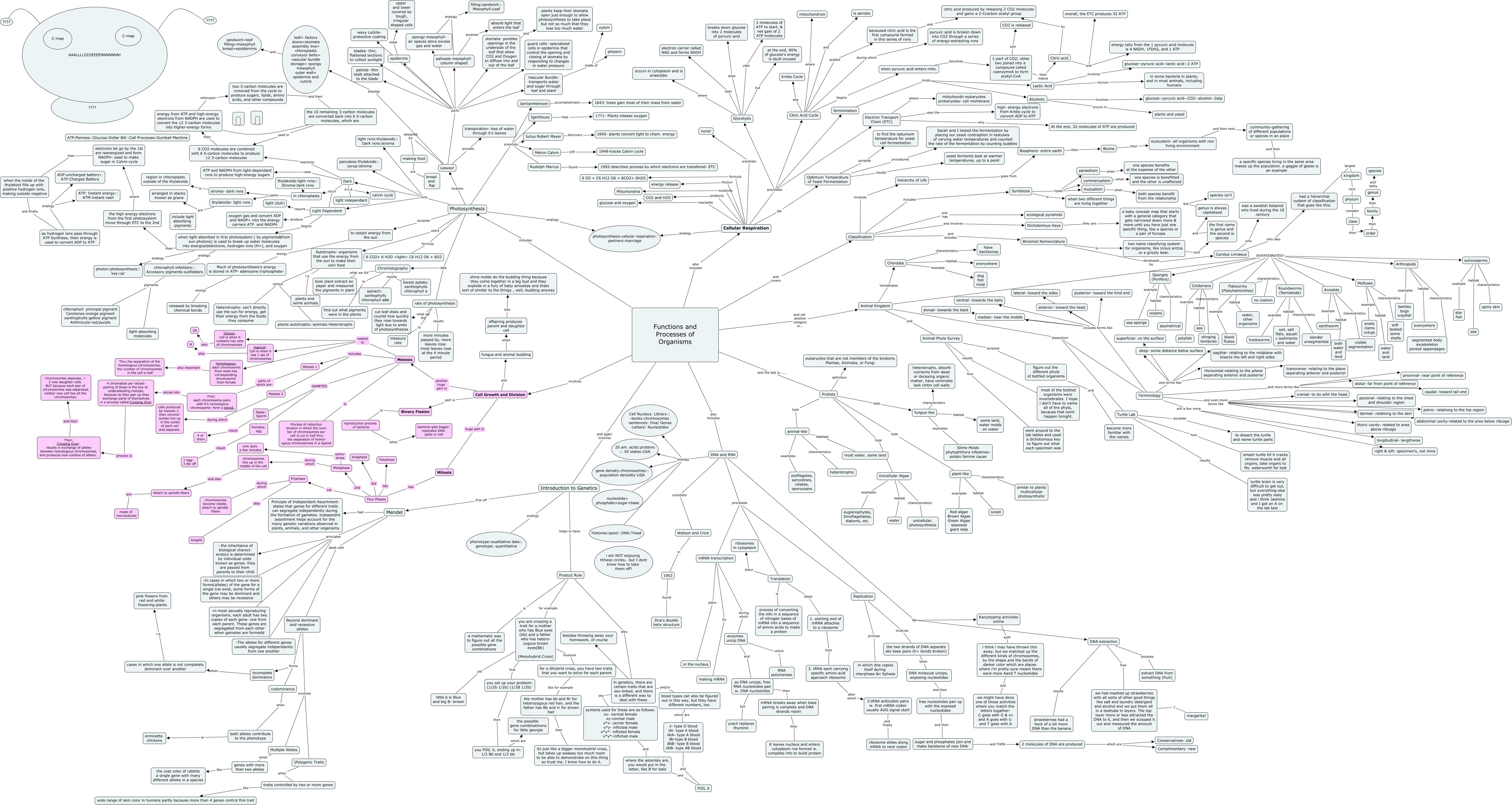 semester 2 concept map Joanna Ridgeway