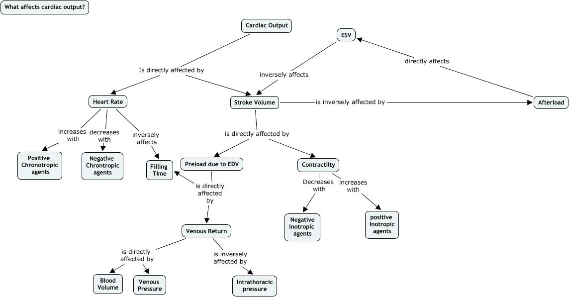 LisaJonesTutorial  What affects cardiac output
