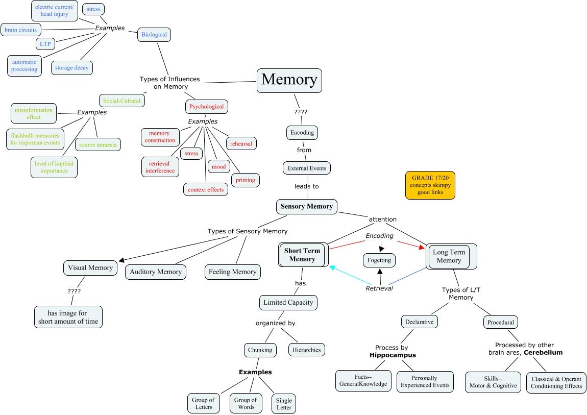 Chapter 8 Memory--Misty Hallman