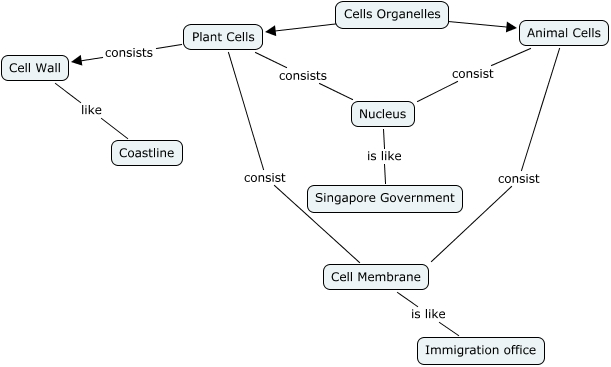 Bio Concept Map on cell diagram, cell hierarchy, cell theory, cell potency, cell introduction, cell mapping, cell table, cell matrix, cell dichotomous key, cell membrane,