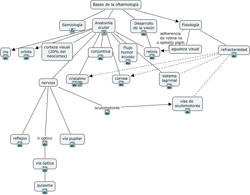 Bases de la oftalmología