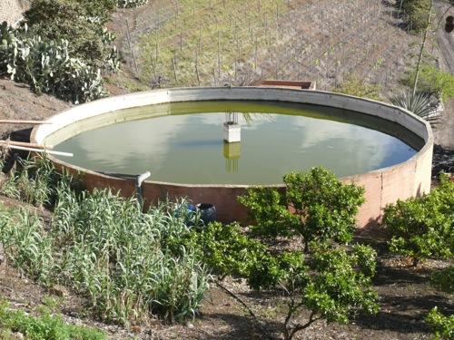 Agua for Oxigenacion del agua en estanques