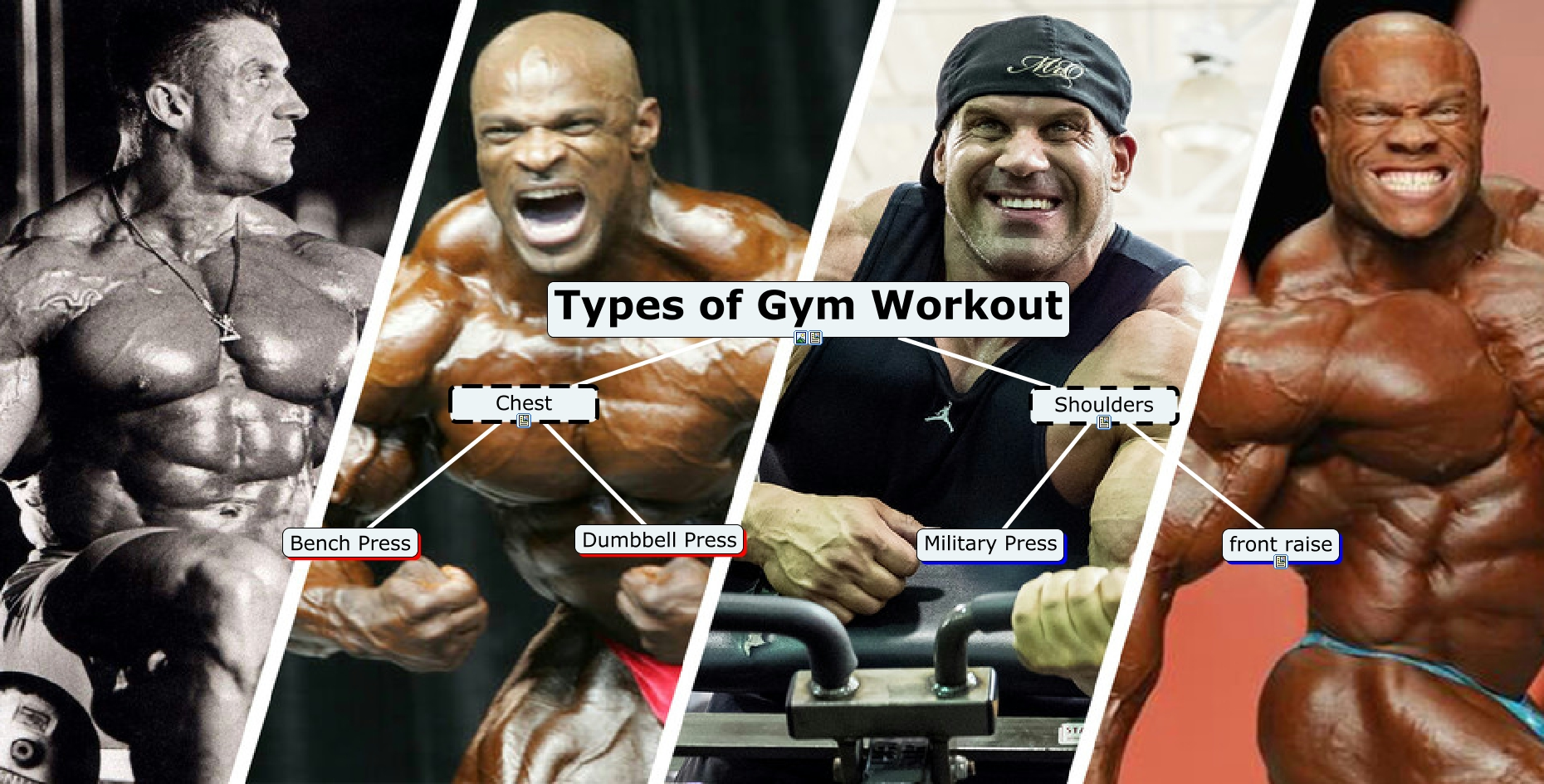 Types of Gym workout